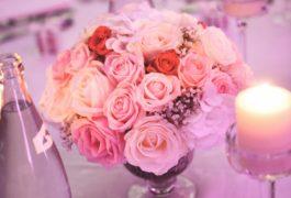 pauline-nikola-mariage-margaux-gatti-photographe-684